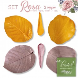 Venatore in silicone - Set Rosa media, completo