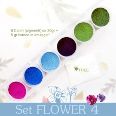 Pigmenti in polvere - Set Flower 4