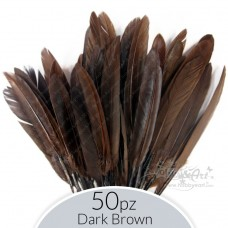 set Piume Dark Brown - 50pz.