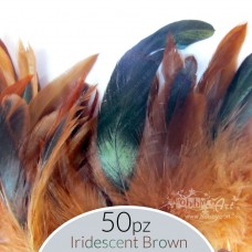 set Piume Iridescent Brown - 50pz.