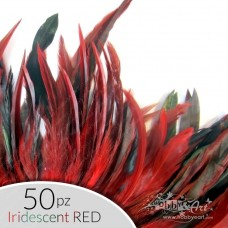 set Piume Iridescent Red - 50pz.