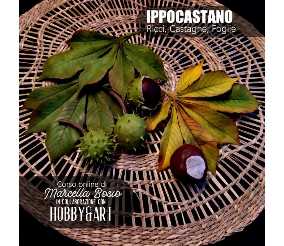 IPPOCASTANO - videocorso online con Marcella Bosio