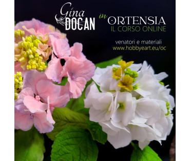ORTENSIA - videocorso online con Gina Docan