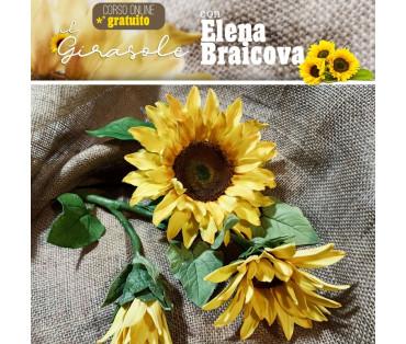 GIRASOLI, videocorso online con Elena Braicova