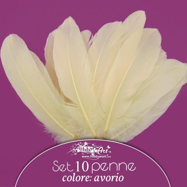 Penne naturali colore avorio, 10 pz