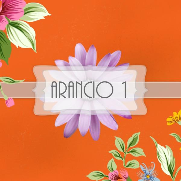 Pigmento Arancio 1 - 20gr