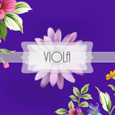 Pigmento Viola - 20gr
