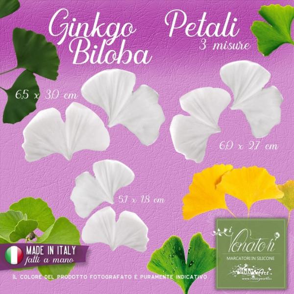 Venatore in silicone Ginkgo Biloba - Petalo 3 misure