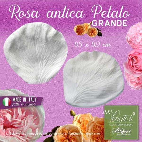 Venatore in silicone Rosa Antica - Petalo Grande 8,5 x 8,0 cm ITA