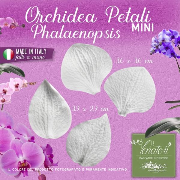 Venatori in silicone Orchidea Phalaenopsis Mini - Petali Set 2 coppie
