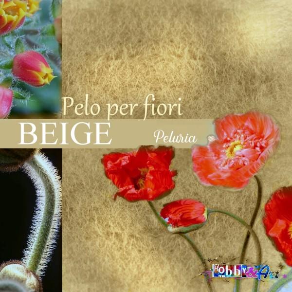 Pelo per fiori e decorazioni - Beige