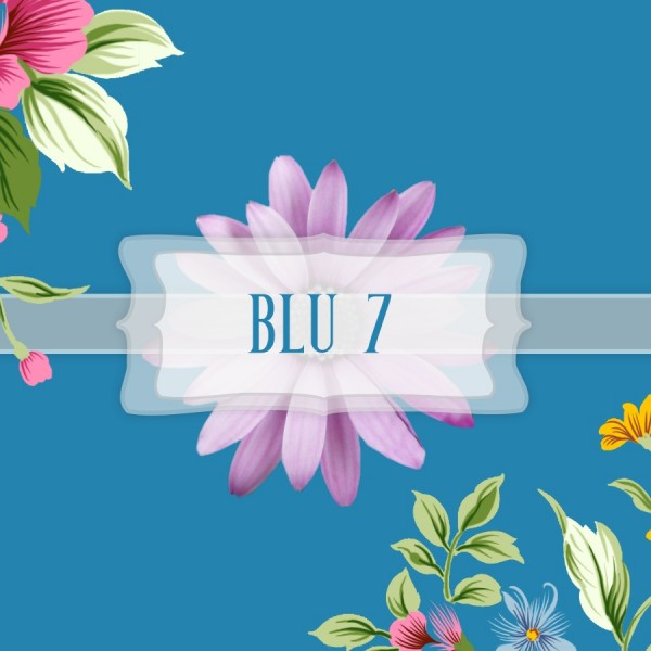 Pigmento Blu 7 - 20gr