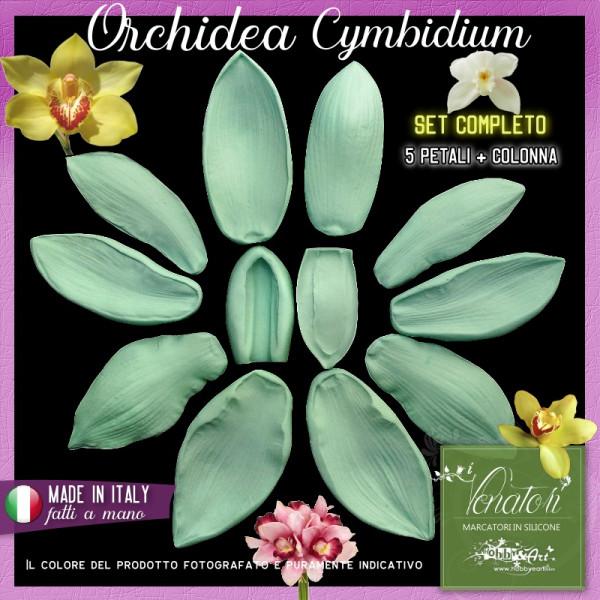 Venatori in silicone Orchidea Cymbidium, set 5 Petali + Colonna - ITA