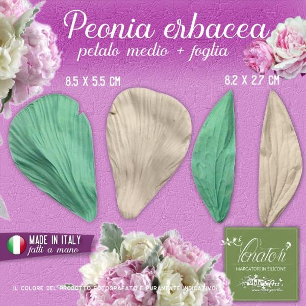 Venatori in silicone - Peonia erbacea, set Petalo grande e foglia - ITA