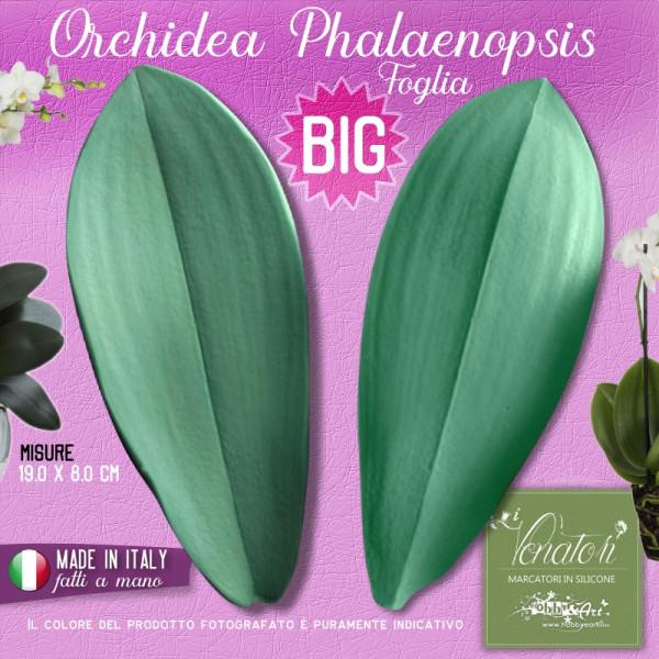 Venatore in silicone foglia di Orchidea Phalaenopsis BIG 19 x 8 cm - ITA