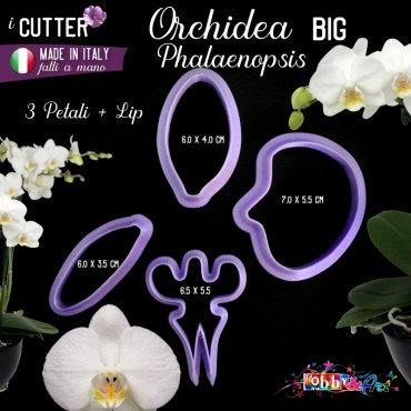 Cutter in plastica Orchidea Phalaenopsis BIG - set 4 pezzi