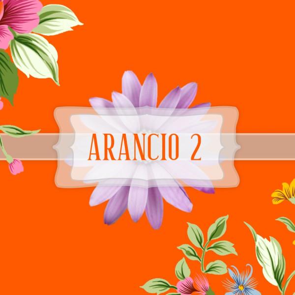 Pigmento Arancio 2 - 20gr