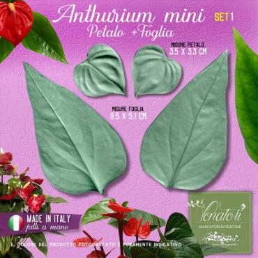 Venatori in silicone Anthurium mini, Petalo e Foglia set 1 - ITA