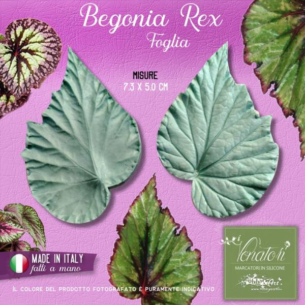 Venatore in silicone Begonia Rex, foglia profilo seghettato - 7,3 x 5,0 cm ITA