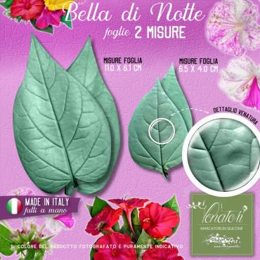Venatore in silicone Bella di Notte - foglia 2 coppie, 2 misure - ITA