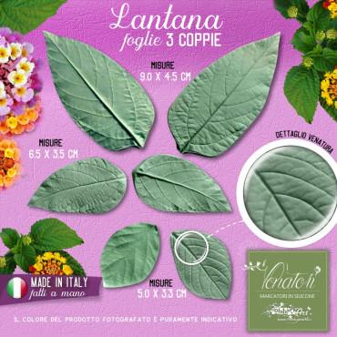 Venatore in silicone Lantana, set 3 foglie - ITA