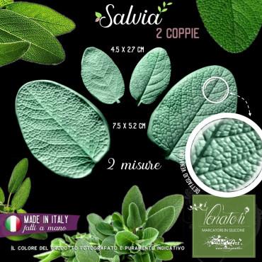 Venatore in silicone Salvia, foglie due misure - ITA