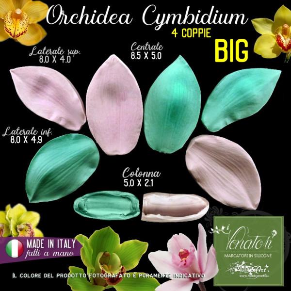 Venatore in silicone Orchidea Cymbidium BIG, Set 1 - ITA