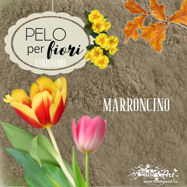Pelo finissimo per fiori e decorazioni - Polvere di velluto colore Marroncino