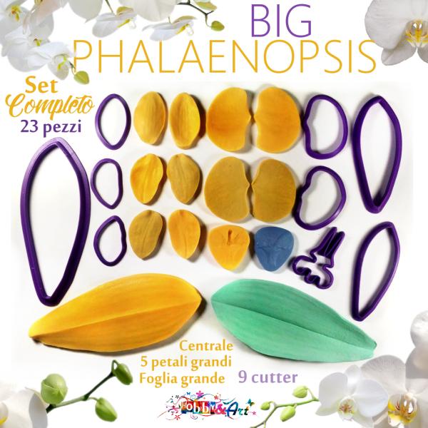 Venatori in silicone orchidea PHALAENOPSIS BIG, set 5 Petali, lip, foglia linea SM + 9 Cutter - ITA