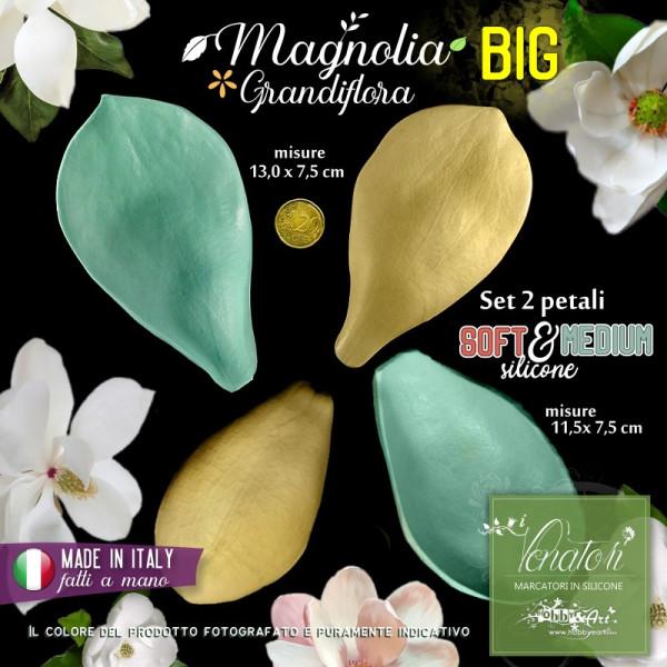 Venatore in silicone petali di MAGNOLIA GRANDIFLORA set BIG 2 petali - ITA