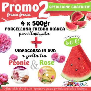 PROMO 2 - 4 x Porcellana Fredda + DVD a scelta tra Rose e Peonie