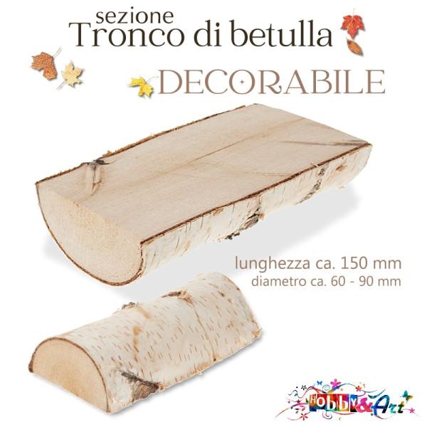 Base in legno sezione tronco di betulla 15 cm