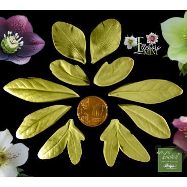 """Venatore in silicone Elleboro petalo + 4 foglie serie """"mini"""" - ITA"""