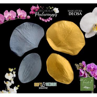 Venatore in silicone Orchidea Phalaenopsis 2 petali, marcatura decisa - ITA