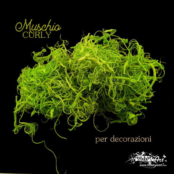 Muschio Curly Verde Mela