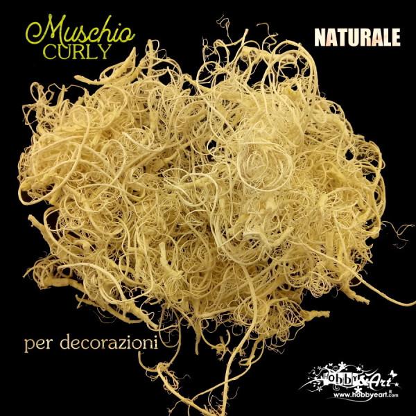 Muschio Curly Naturale sbiancato