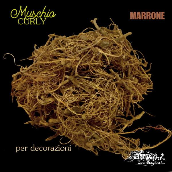 Muschio Curly Marrone
