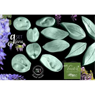 Venatori e stampi in silicone GLICINE petali e foglie - ITA