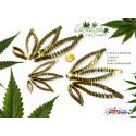 Cutter tagliapasta CANAPA 3 foglie 12 pezzi
