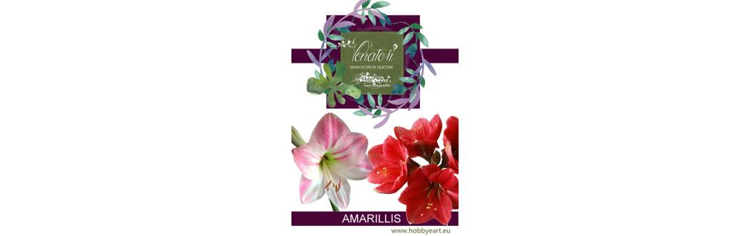 Amarillis