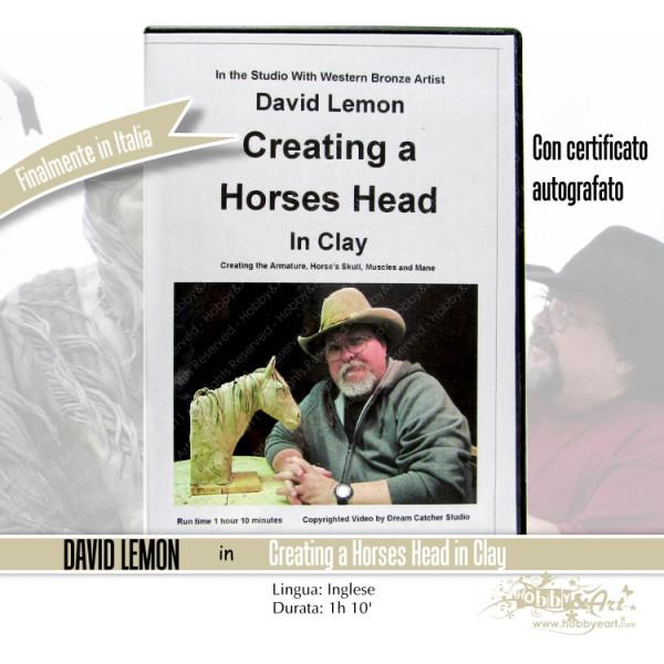 DVD Create a Horses Head