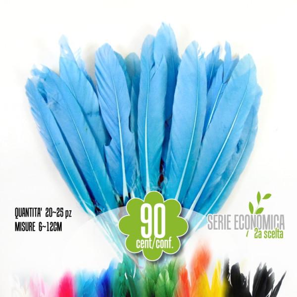 Penne Azzurre, 20-25 pz serie economica