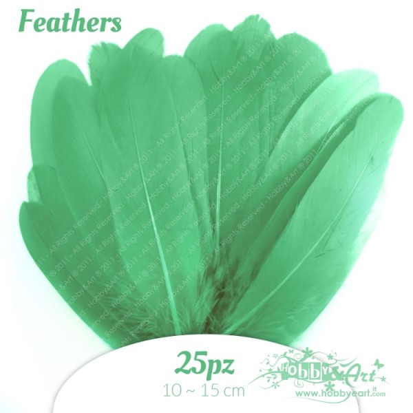Penne Verde Acqua 25pz - 12-15cm