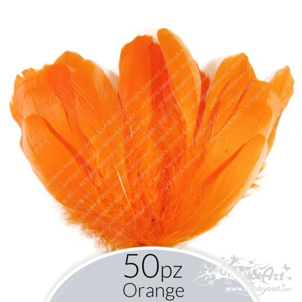 Penne Orange - 50pz