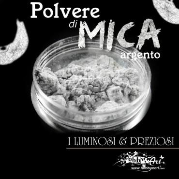 Pigmento in Polvere di Mica - ARGENTO