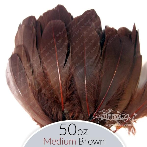 Piume Medium Brown - 50 pz.