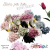 Pistilli e Pelo per fiori