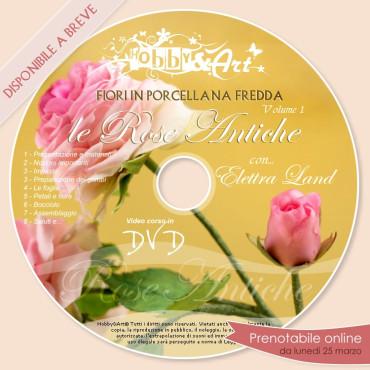 DVD - Porcellana Fredda: Le Rose Antiche