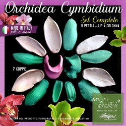 Venatori in silicone Orchidea Cymbidium, set  COMPLETO 7 coppie - ITA