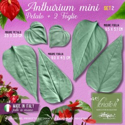 Venatori in silicone Anthurium mini, Petalo e 2 Foglie set 2 - ITA